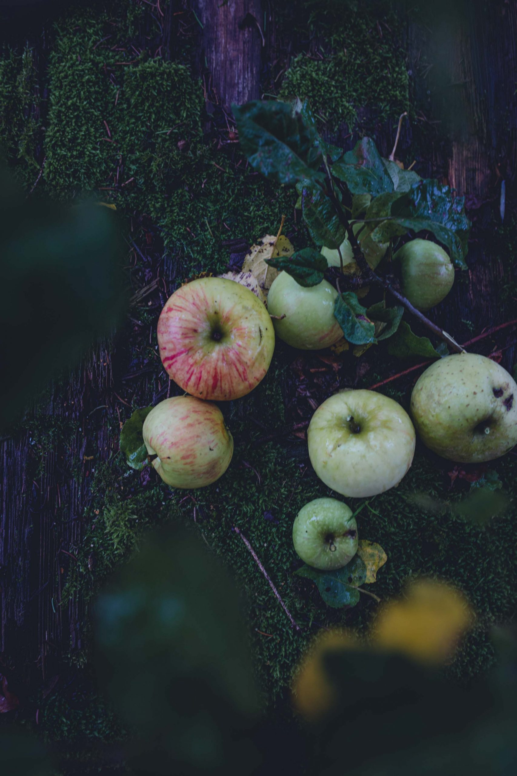 Rezept für einfachen Apfelkuchen mit Zimt